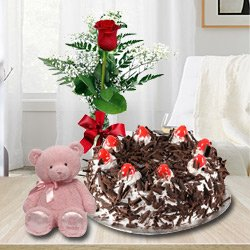 Gratifying 1 Lb Black Forest Cake with Single Red Rose and a Small Teddy Bear to Behala