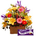 Delectable Cadburys Dairy Milk Chocolate and Mixed Blooms to Howrah