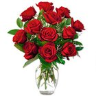 Blossoming Red Roses in a Vase with Pure Love to Barasat
