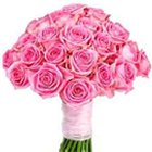 Divine 30 Bright Pink Roses Explosion to Maldah