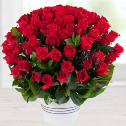 Luxurious Valley of 100 Dutch Red Roses Bouquet to Burdwan