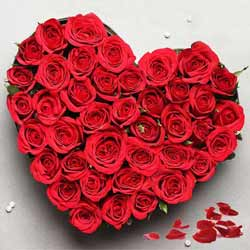 Outstanding Heart-shaped Arrangement of 2 Dozen Roses in Red to Puruliya