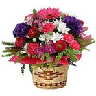 Lovely colorful Flower arrangement in a Bamboo Pot to Lake town