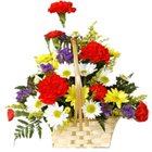 Enchanted Arrangement of Mixed Carnations and Gerberas to Koch bihar