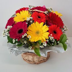 Captivating Dozen Mixed Gerberas Basket to Howrah