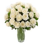 Charming White or Creamy Roses with a Vase to Burdwan