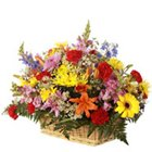 Sweetest Moments in Love Mix Arrangement of Fresh Flowers to Garia