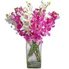 Lovely Orchids in Vase to Nadia