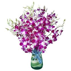 Lovely Orchids in Vase to Koch bihar