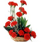 Joyful Love Special Bouquet of Red 18 Carnations to Behala