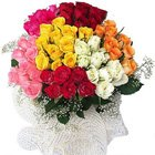 50 Mixed Colour Roses Bouquet to Puruliya