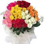 50 Mixed Colour Roses Bouquet to Uttar dinajpur