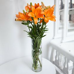 Delightful Vase Decked with 6 Pcs. Lilies in Mixed Colors to Madhyamgram