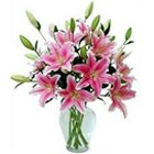 Tender Pink Colored Lilies with Free Vase to Birati