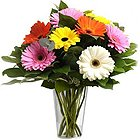 Gorgeous Mixed Gerberas in a Glass Vase to Hooghly