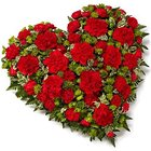 Scintillating 24 Red Carnations in Heart Shape to South 24 parganas