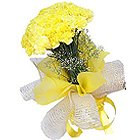 Radiant Composition of Yellow Carnations to Birbhum