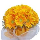 Delightful Yellow Coloured Gerberas Collection to Behala
