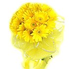 Regal Sunshine Presentation of 15 Gerberas of Yellow Colour to Bakura