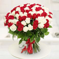 Glorious Attract Red  N  White Roses Premium Bouquet to Jalpaiguri