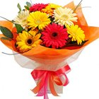 Magical Key to Heart 10 Gerberas Collection to Howrah
