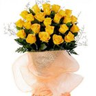 Classic Special Beauty of Yellow Roses Collection to Garia