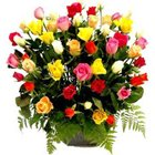 Gorgeous Basket of Mixed Coloured Roses Collection to Lake town