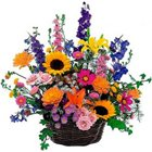 Pristine Basket of Mixed Seasonal Flowers with Green Fillers to Garia