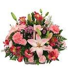 Designed Assortment Flowers to Howrah