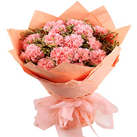 Deliver this petite Hand Bunch of Pink Carnations in Tissue Packing to Siliguri