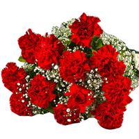 Deliver this delicate Online Bouquet of Red Carnations to Darjiling