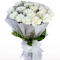 Deliver a delicate Online Bouquet of White Cranations in a tissue wrap to Maldah