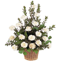 Deliver this attractive White Carnations basket to Garia