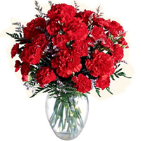 Now deliver these petite Red Carnations in a special glass vase to Puruliya