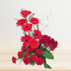Radiant assemble of Red Carnations, Roses & Gerberas to Darjiling