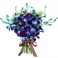 Attractive Hand Bunch of Blue Orchids to Cooch behar