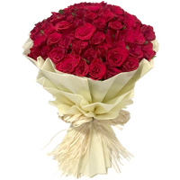 Tissue Wrapped Red Rose Bouquet to Cooch behar