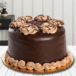 Captivating Chocolate Cake