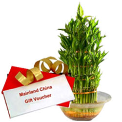 Marvelous Gift of Mainland China Gift Voucher for Loved Ones