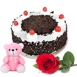 Birthday Favorite Black Forest Cake with Fragrant Rose N Cute Teddy