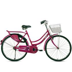 Ideal BSA Rangoli Bicycle