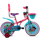 Made-to-Hover BSA Champ Dora Bicycle