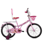 Exquisite BSA Champ Flora Cycle