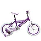 Joyful and Thriving BSA Champ Ringo Bicycle<br>