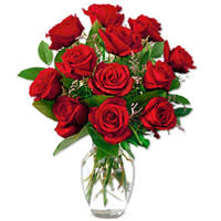 Blossoming Red Roses in a Vase with Pure Love
