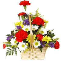 Mix Arrangement of Carnations and  Gerberas
