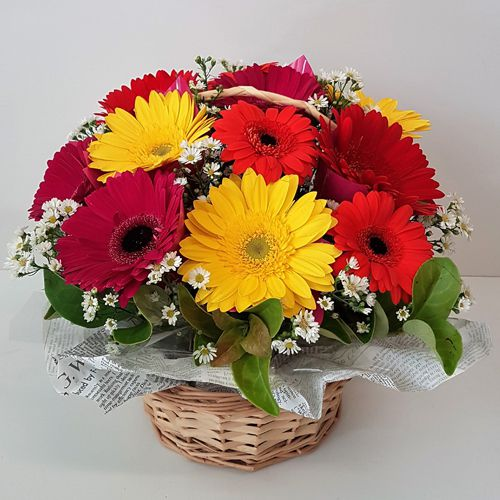 Captivating Dozen Mixed Gerberas Basket
