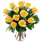 Stimulating Twelve Yellow Roses in a Vase with Dreams Of Joy