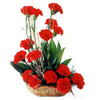 Joyful Love Special Bouquet of Red 18 Carnations