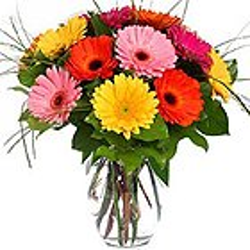 Heartening Blossom Mishmash